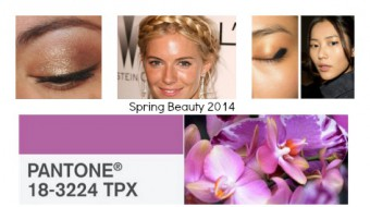 Spring Beauty 2014