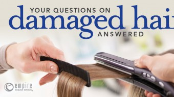 Questions about damages hair